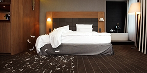 hotel_and_hospitality_industry