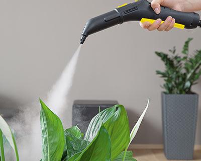 تمیز کردن گیاهان مصنوعی با بخارشو
