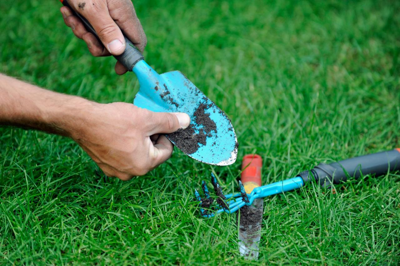 شستشوی ابزارآلات باغبانی